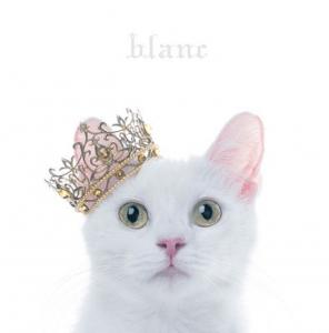 Aimer - blanc (édition normale et limitée B)